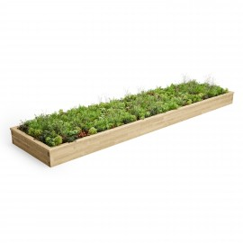 Extra Large Raised Bed CGI