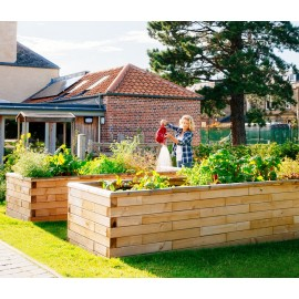 Large Raised Beds